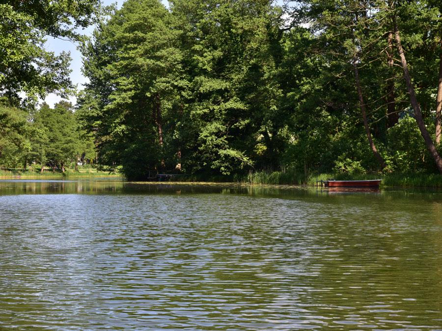 Friedrich-Wilhelm-Kanal - Natur und Wald